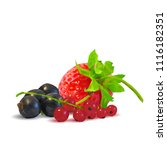 fresh  nutritious and tasty...   Shutterstock .eps vector #1116182351