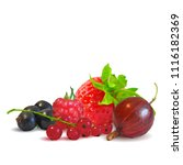 fresh  nutritious and tasty...   Shutterstock .eps vector #1116182369