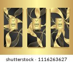 set template for package or... | Shutterstock .eps vector #1116263627