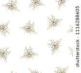 vector illustration. beetle... | Shutterstock .eps vector #1116288605