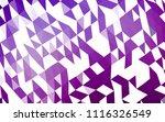 light purple vector polygonal...   Shutterstock .eps vector #1116326549