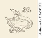 eggplant  full eggplant  a... | Shutterstock .eps vector #1116333191