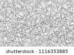 light silver  gray vector of...   Shutterstock .eps vector #1116353885