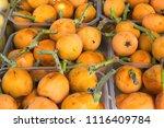 ripe organic vivid orange ... | Shutterstock . vector #1116409784