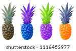 pineapple collection  set of... | Shutterstock .eps vector #1116453977