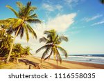 beautiful tropical pacific... | Shutterstock . vector #1116558035