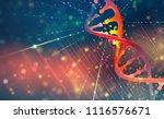 dna helix. hi tech technology... | Shutterstock . vector #1116576671