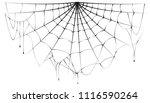 torn semicircular spider web... | Shutterstock .eps vector #1116590264