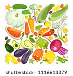 vector illustration of a... | Shutterstock .eps vector #1116613379