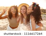 image of three joyous... | Shutterstock . vector #1116617264