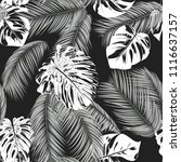 tropic seamless pattern with... | Shutterstock .eps vector #1116637157