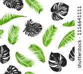 vector monstera and palm leaves.... | Shutterstock .eps vector #1116641111