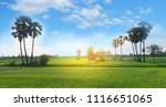 field rice in asian | Shutterstock . vector #1116651065