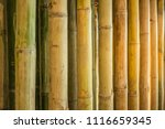 Background  Texture Bamboo...