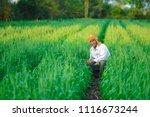 indian farmer holding crop... | Shutterstock . vector #1116673244