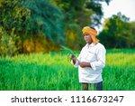 indian farmer holding crop... | Shutterstock . vector #1116673247