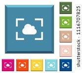 camera white balance cloudy... | Shutterstock .eps vector #1116707825