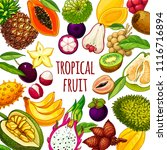 tropical fruits vector... | Shutterstock .eps vector #1116716894