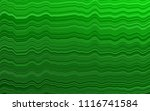 light green vector pattern with ... | Shutterstock .eps vector #1116741584