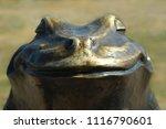 Closeup Of A Bronze Frog Statu...