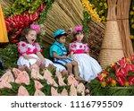 funchal  madeira  portugal  ... | Shutterstock . vector #1116795509