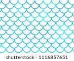 blue mermaid scales on white....   Shutterstock .eps vector #1116857651