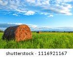 Yellow Round Haystacks Lie On A ...