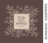 background with myrtus  myrtle  ... | Shutterstock .eps vector #1116935651