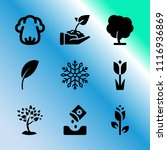 vector icon set about gardening ... | Shutterstock .eps vector #1116936869
