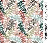 fern frond herbs  tropical... | Shutterstock .eps vector #1116972254