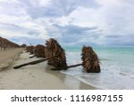 fallen sunshades on the beach ... | Shutterstock . vector #1116987155