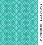 the geometric pattern with... | Shutterstock .eps vector #1116991931