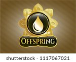 gold shiny emblem with drop...   Shutterstock .eps vector #1117067021