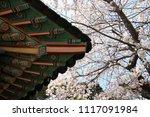 spring cherry blossom | Shutterstock . vector #1117091984