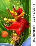 arranging  bouquet flowers | Shutterstock . vector #1117172345