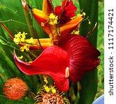 bouquet flowers arrangement | Shutterstock . vector #1117174421