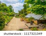 talbot botanical garden in... | Shutterstock . vector #1117321349
