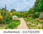 talbot botanical garden in... | Shutterstock . vector #1117321355