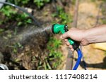 watering the seedlings of the... | Shutterstock . vector #1117408214