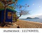 palm beach  north queensland ... | Shutterstock . vector #1117434551