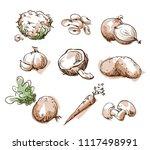 assortment of white  light... | Shutterstock .eps vector #1117498991