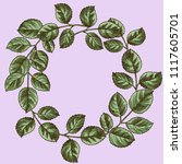 round wreath of leaves of roses.... | Shutterstock .eps vector #1117605701