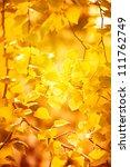 Autumn Yellow Leaves  Shallow...