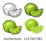 lime slice and whole. isolated... | Shutterstock .eps vector #1117667381