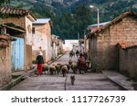 local street life in a village... | Shutterstock . vector #1117726739