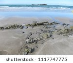 the brittany coast  | Shutterstock . vector #1117747775