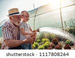 grandfather with his grandson... | Shutterstock . vector #1117808264
