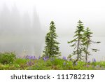 Three small pine trees near lake with flowers and fir trees.  Mt. Rainier national Park area. Naches Peak Loop Trail. Roundtrip 3.0 miles, Elevation Gain 600 ft Highest Point5849 ft - stock photo