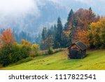 autumn rural landscape with fog.... | Shutterstock . vector #1117822541