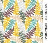 fern frond herbs  tropical... | Shutterstock .eps vector #1117837421